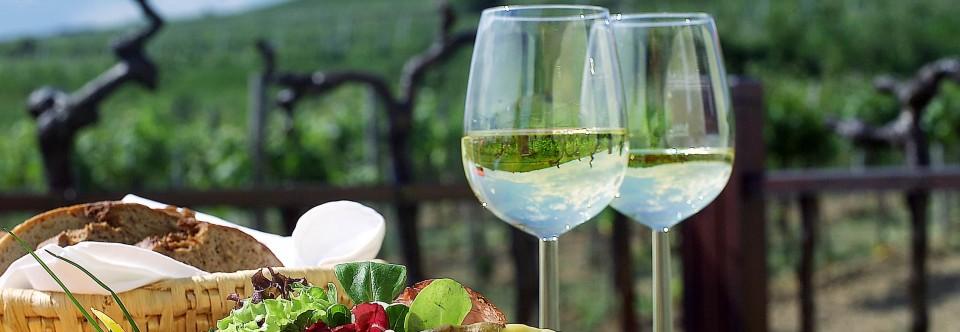 Weindegustation